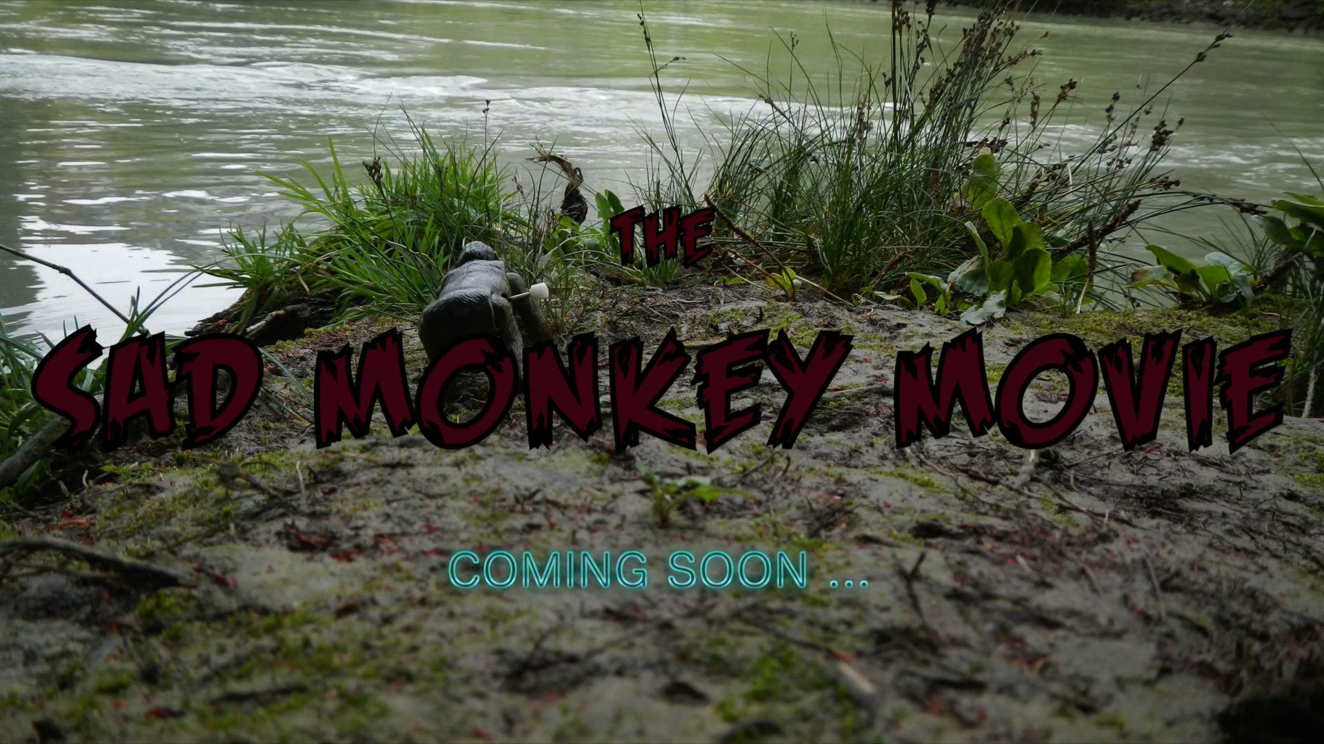 Abenteuer mit dem traurigen Affen