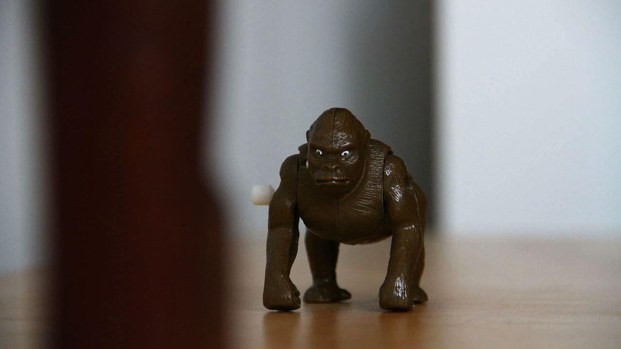 Abenteuer mit dem traurigen Affen – 3
