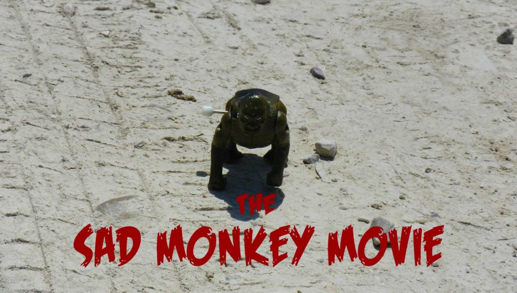 SadMonkeyMovie22